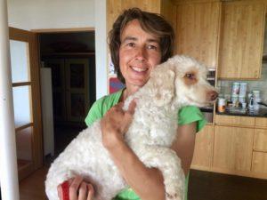 10-labradoodle-welpen-zucht-hundezucht-schweiz-barf-familienhund-allergikerhund