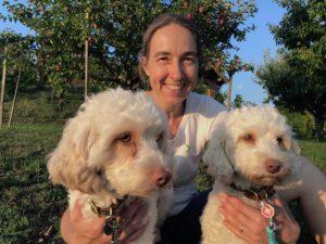 22-labradoodle-welpen-zucht-hundezucht-schweiz-barf-familienhund-allergikerhund