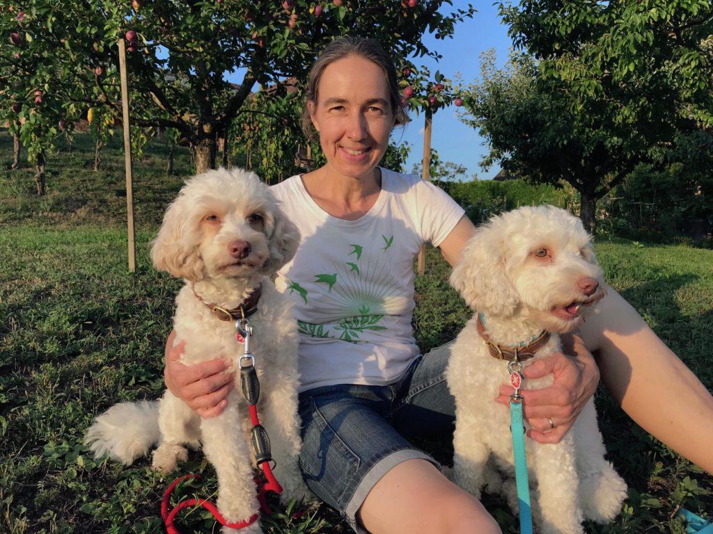 23-labradoodle-welpen-zucht-hundezucht-schweiz-barf-familienhund-allergikerhund